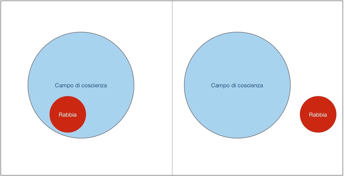 Grafico in cui vediamo come la rabbia viene gestita tramite la disidentificazione